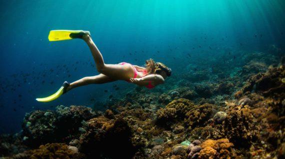Snorkelling at Nusa Lembongan