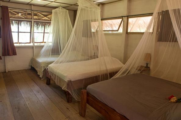 Beach Bungalow accommodation