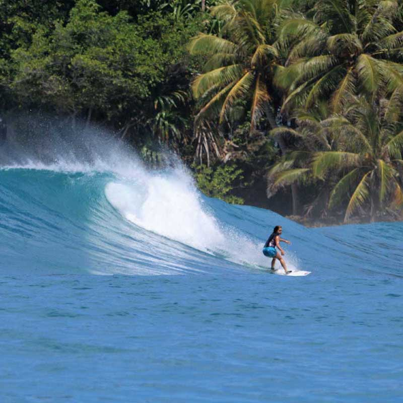 Mentawai Surf Adventures
